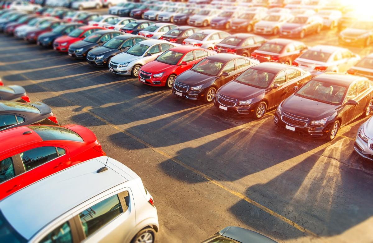fabrycznie nowe auta obok siebie na parkingu